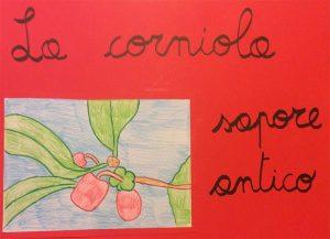 Gli studenti di Spagnago impegnati in un progetto formativo sulla CORNIOLA
