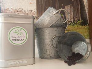 tisana-corniola6
